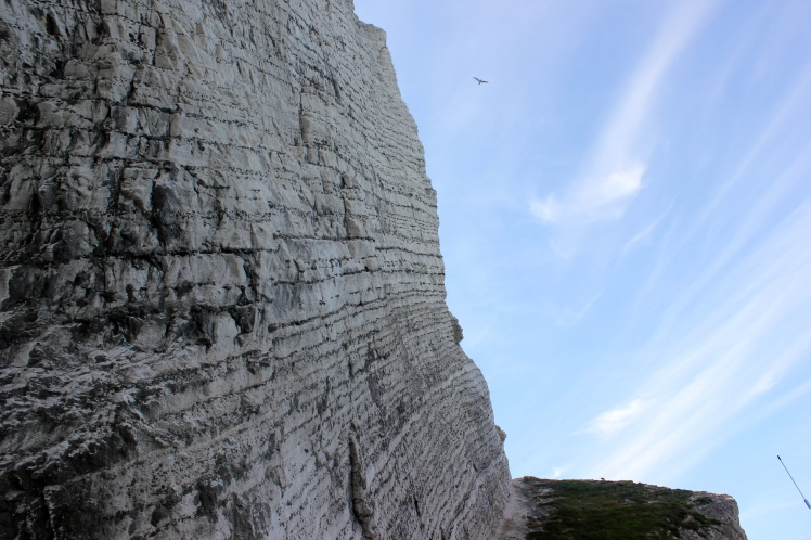 Chalk cliffs looking up
