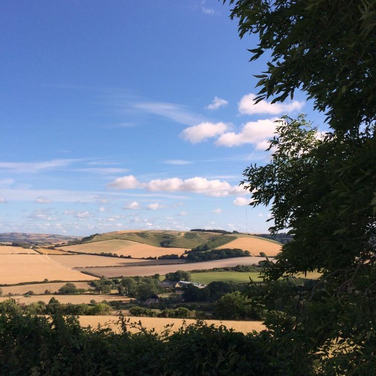 Tennyson trail view